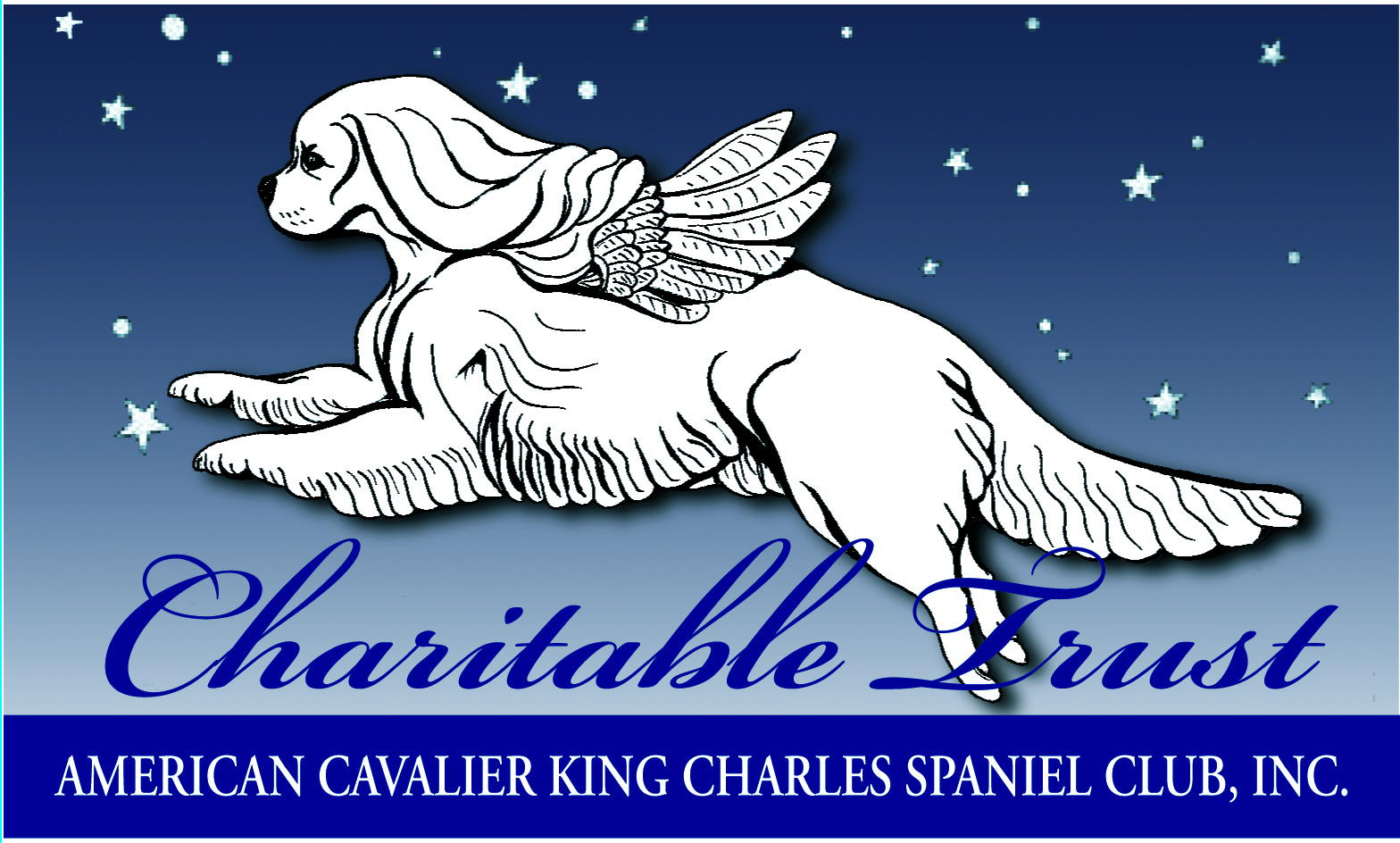 Charitable Trust Donation $10